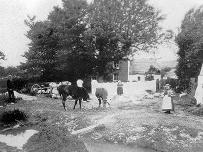 Lanmorlais Farm Early 1900
